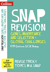 Revision book cover