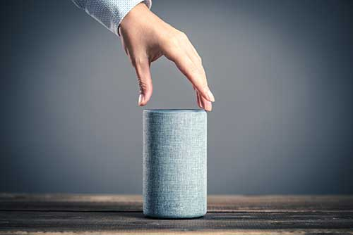 smart speaker